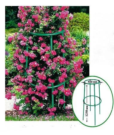 Шпалера для цветов своими руками на даче